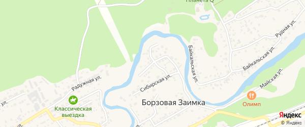 Стрелецкая улица на карте поселка Борзовой Заимки с номерами домов