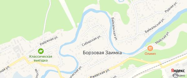 Сибирская улица на карте поселка Борзовой Заимки с номерами домов