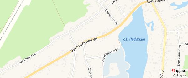 Центральная улица на карте села Лебяжьего с номерами домов