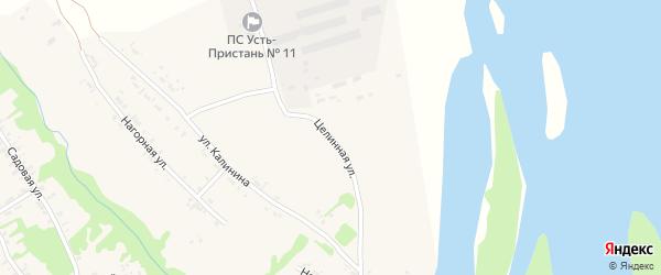 Целинная улица на карте села Усть-Чарышской Пристани с номерами домов