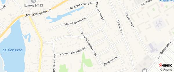 Раздольная улица на карте села Лебяжьего с номерами домов