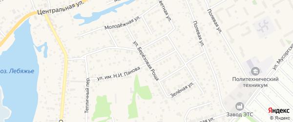 Улица Березовая Роща на карте села Лебяжьего с номерами домов