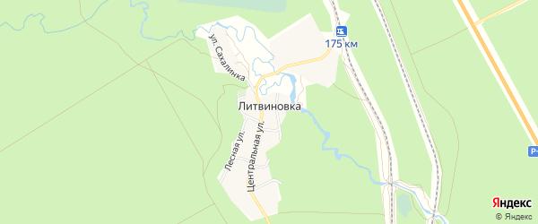 Карта поселка Литвиновка в Алтайском крае с улицами и номерами домов