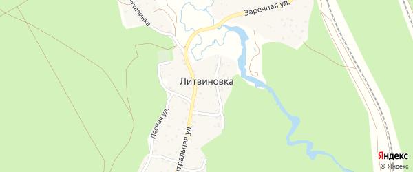 Дорожная улица на карте поселка Литвиновка с номерами домов