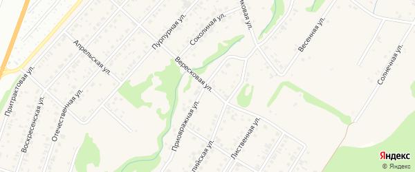 Вересковая улица на карте поселка Бельмесево с номерами домов