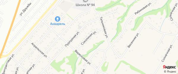Соколиная улица на карте поселка Бельмесево с номерами домов