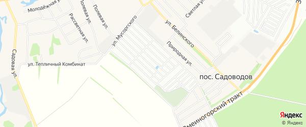 Карта садового некоммерческого товарищества Южного садовода города Барнаула в Алтайском крае с улицами и номерами домов