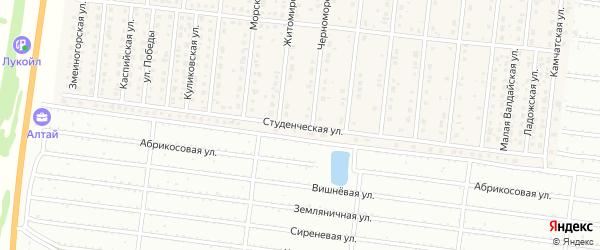 Студенческая улица на карте поселка Бельмесево с номерами домов