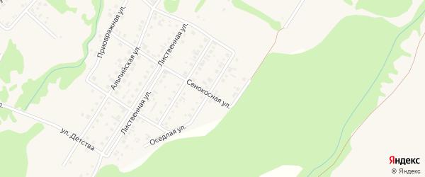 Камышовая улица на карте поселка Бельмесево с номерами домов