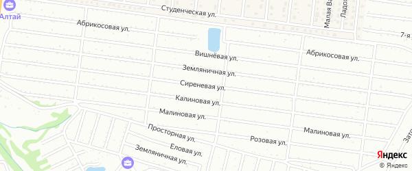 Сиреневая улица на карте садового некоммерческого товарищества Алтая с номерами домов