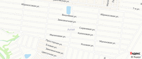 Лесная улица на карте садового некоммерческого товарищества Алтая с номерами домов
