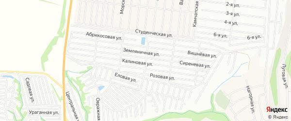 Карта садового некоммерческого товарищества Алтая города Барнаула в Алтайском крае с улицами и номерами домов