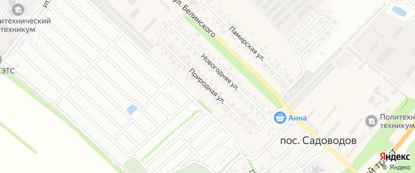 Природная улица на карте Южного поселка с номерами домов