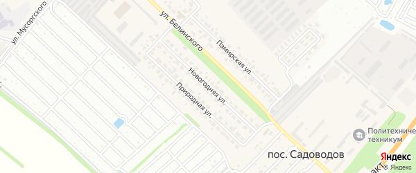 Новогодняя улица на карте Южного поселка с номерами домов