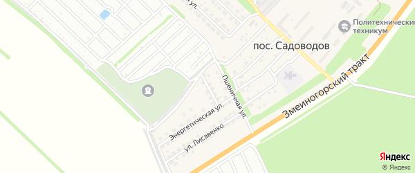 Улица Красных Роз на карте поселка Садоводова с номерами домов
