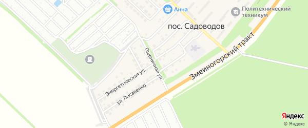 Пшеничная улица на карте поселка Садоводова с номерами домов