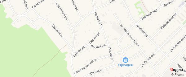 Лесная улица на карте села Озерков с номерами домов