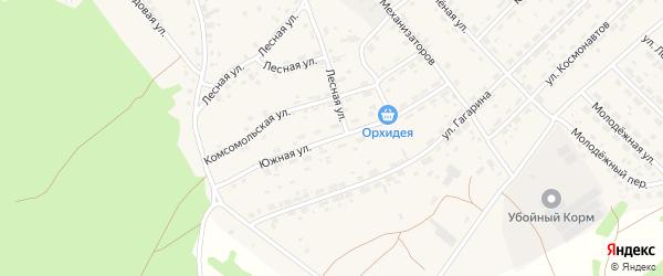 Южная улица на карте села Озерков с номерами домов