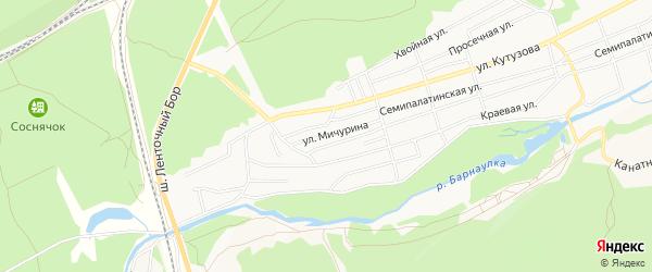 Карта садового некоммерческого товарищества Им Мичурина города Барнаула в Алтайском крае с улицами и номерами домов
