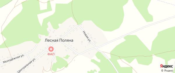 Новая улица на карте поселка Лесная Поляна с номерами домов