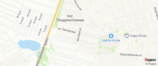 Улица Павлюкова на карте поселка Плодопитомника с номерами домов