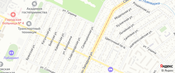 Селекционная улица на карте поселка Научного Городка с номерами домов