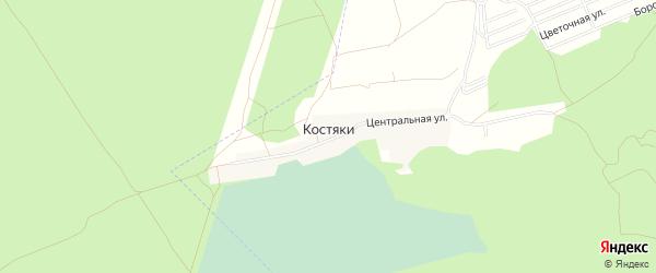 Карта поселка Костяки в Алтайском крае с улицами и номерами домов