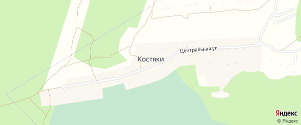 Центральная улица на карте поселка Костяки с номерами домов