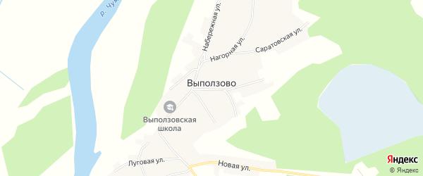 Карта села Выползово в Алтайском крае с улицами и номерами домов