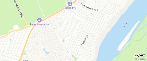 Карта садового некоммерческого товарищества Труда города Барнаула в Алтайском крае с улицами и номерами домов