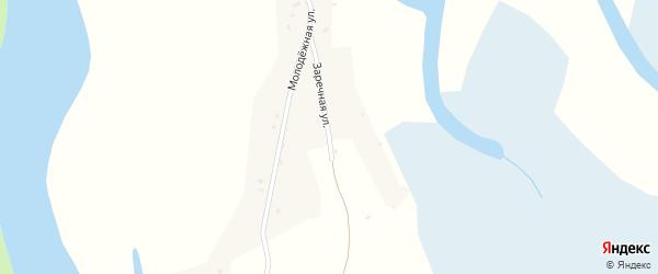Заречная улица на карте села Усть-Чарыша с номерами домов