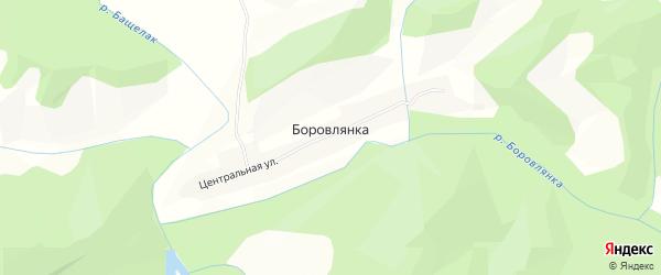 Карта села Боровлянки в Алтайском крае с улицами и номерами домов