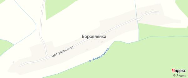 Береговой переулок на карте села Боровлянки с номерами домов