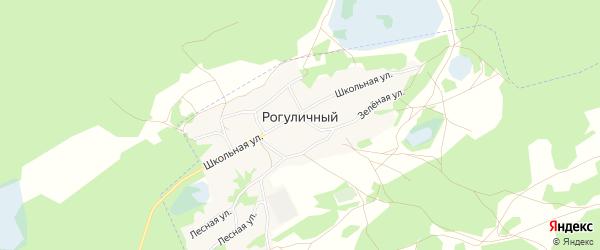 Карта Рогуличного поселка в Алтайском крае с улицами и номерами домов