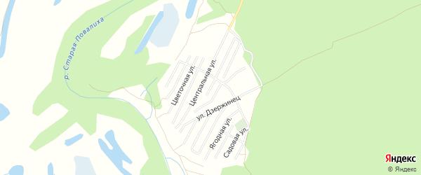 Карта садового некоммерческого товарищества Строителя НКРЗ в Алтайском крае с улицами и номерами домов
