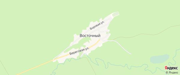 Карта Восточного поселка в Алтайском крае с улицами и номерами домов
