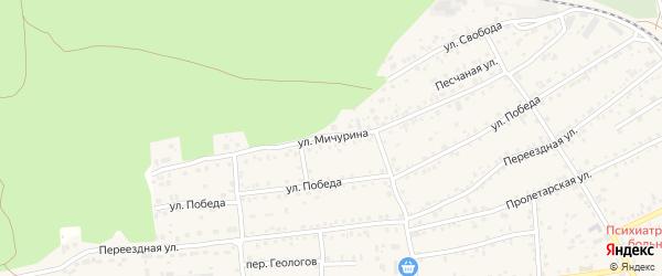 Улица Мичурина на карте села Боровихи с номерами домов