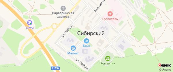 Улица 40 лет РВСН на карте ЗАТА Сибирского поселка с номерами домов