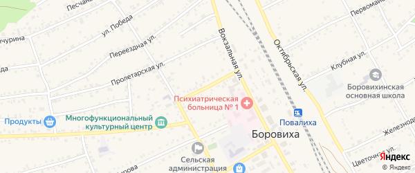 Советская улица на карте села Боровихи с номерами домов