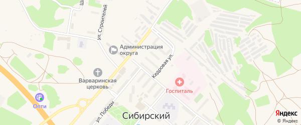 Кедровая улица на карте садового некоммерческого товарищества N 4 с номерами домов