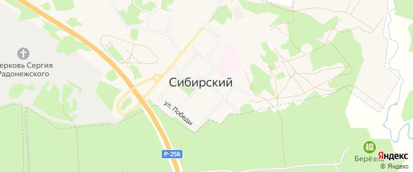 Карта ЗАТА Сибирского поселка в Алтайском крае с улицами и номерами домов