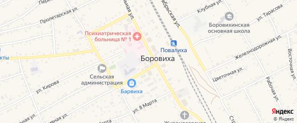 Микрорайон Берёзки на карте села Боровихи с номерами домов