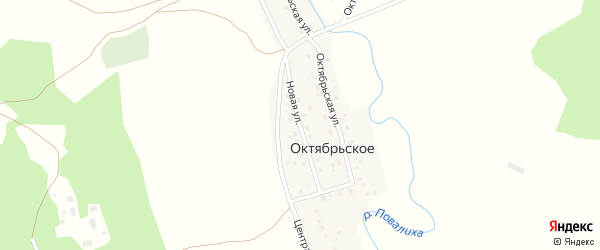 Новая улица на карте Октябрьского села с номерами домов