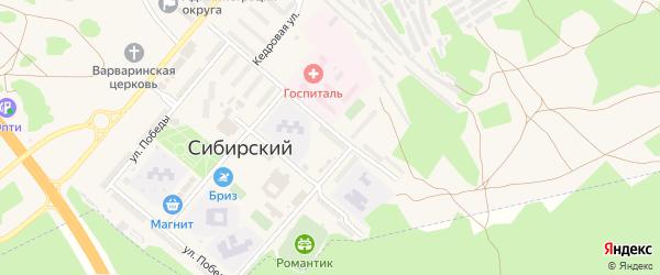 Кедровая улица на карте садового некоммерческого товарищества N 13 с номерами домов