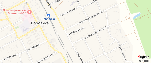 Цветочная улица на карте села Боровихи с номерами домов