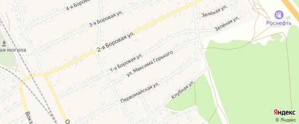 Улица М.Горького на карте села Боровихи с номерами домов