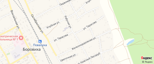 Улица Тарасова на карте села Боровихи с номерами домов