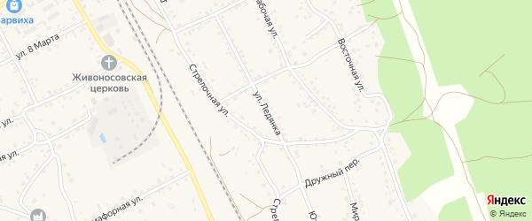 Улица Ледянка на карте села Боровихи с номерами домов