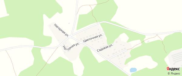 Цветочная улица на карте Октябрьского села с номерами домов