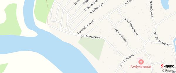 Улица Мичурина на карте села Бобровки с номерами домов